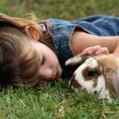 Helping your child develop animal empathy | Empathy and Compassion | Scoop.it