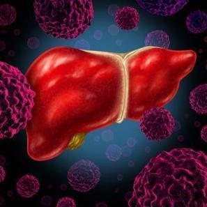 Liver cancer risk influenced by blood selenium levels | You are what you eat! | Scoop.it