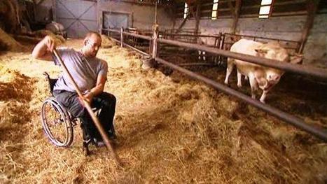 VIDEO. Fermier en fauteuil roulant | RDV Agri, Actu des Professionnels de l'Agriculture. | Scoop.it