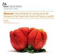 Zero Waste in ACTION: Food Waste, the business perspective | The New Black Gold... | Scoop.it