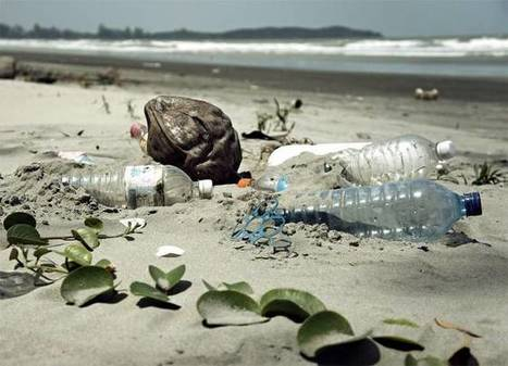 'Biodegradable' plastics are not so great for the oceans, says UN | Coastal Restoration | Scoop.it
