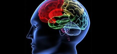 Brain learning ability is directly proportional to 'Curiosity', research says | Learning in the 21st century | Scoop.it