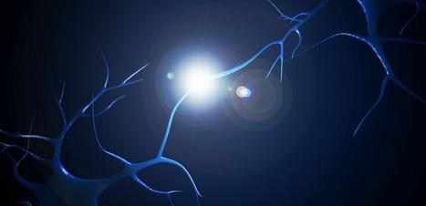 Optogénétique : éclairer les neurones pour retrouver la mémoire ? | Numérique & pédagogie | Scoop.it