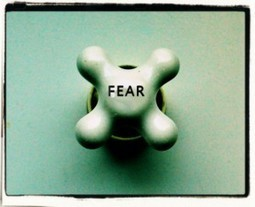 Fear Series, Part 2:  The Fear Holding You Back -- Thriveology Podcast | Thriveology:  The Art & Science of Thriving | Scoop.it