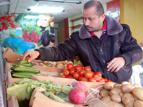 Organic Produce Is A Tough Sell In The Gaza Strip   Organic Gardening   Scoop.it