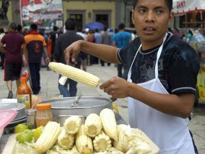 Mexico's poor suffer as food speculation fuels tortilla crisis - Investigations - The Ecologist | Food issues | Scoop.it