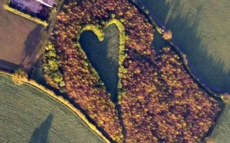 Farmer creates heart-shaped meadow in memory of wife  - Telegraph | The Barley Mow | Scoop.it