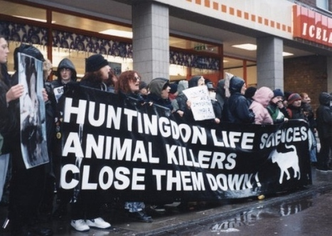 Animal rights campaigners SHAC disband group against Huntingdon Life Sciences | UK Medtech law | Scoop.it