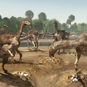 Nests of Big-Clawed Dinosaurs Found in Mongolia - Discovery News | Geology | Scoop.it