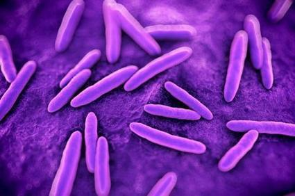 Fighting back against superbugs | Sustain Our Earth | Scoop.it