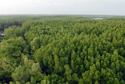 Vietnam : Mieux gérer et protéger les écosystèmes marins   Economie et biodiversité   Scoop.it