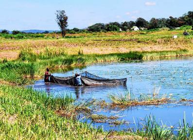 METRO | L'aide belge à la RDC (2/3) : Le poisson-chat plutôt que le cobalt | International aid trends from a Belgian perspective | Scoop.it