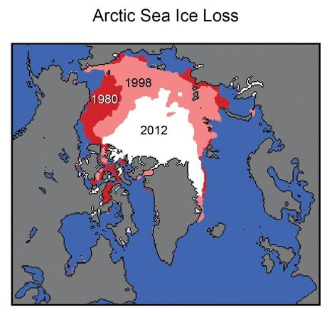 5 reasons to care about #Arctic ice melt #climate #extinction #environment | Messenger for mother Earth | Scoop.it