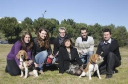 Researchers cure type 1 diabetes in dogs | 21st Century Innovative Technologies and Developments as also discoveries, curiosity ( insolite)... | Scoop.it