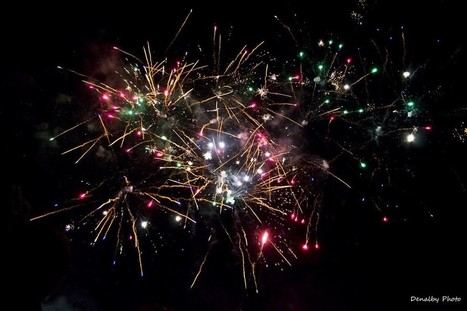 How #SeaWorld's #Fireworks Are #Polluting #MissionBay -- And Possibly #Harming #Wildlife   Rescue our Ocean's & it's species from Man's Pollution!   Scoop.it
