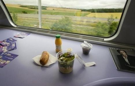 TGV: 130 postes menacés par l'arrêt de la restauration en espace Pro | Corporate Food | Scoop.it