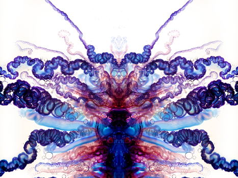 Psychedelic Portuguese Man-of-War Photos Prove God Is a Stoner   Weird Science   Scoop.it