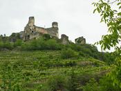 Snapshots from Austria: Steep Vineyards, Schnitzel, Roman Ruins ... | Grüner Veltliner & More | Scoop.it