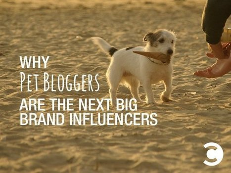 Why Pet Bloggers Are the Next Big Brand Influencers | MarketingHits | Scoop.it