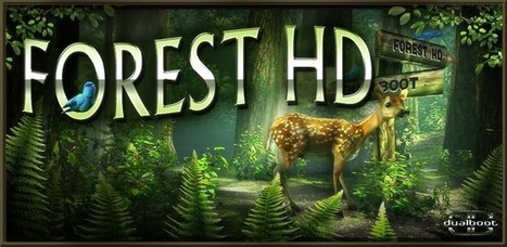 Forest HD 1.4 apk For Android Free Download ~ MU Android APK | hd live wallpaper | Scoop.it
