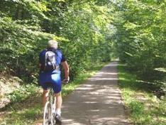 Fiche VVV - AF3V : forêt de Rambouillet | vélo | Scoop.it
