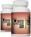 Muscle Building Supplements | Herbal Products | Scoop.it
