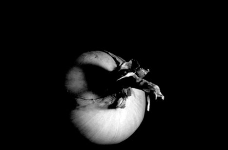 Bahar Borna Faraz Portrait of Onions | Daily ART News | Scoop.it