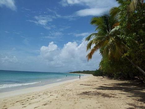 10 plages de rêve en Martinique | Guide évasion | Guide de voyage | Scoop.it
