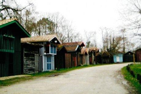 Chasse aux trésors naturels à Biganos | Tourisme sur le Bassin d'Arcachon | Scoop.it