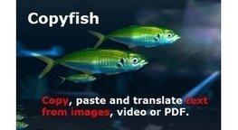 Enseigner avec le numérique - Copyfish   enseigner avec le numérique   Scoop.it