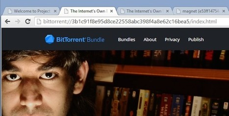 Maelstrom - Le navigateur Bittorrent est disponible | Time to Learn | Scoop.it
