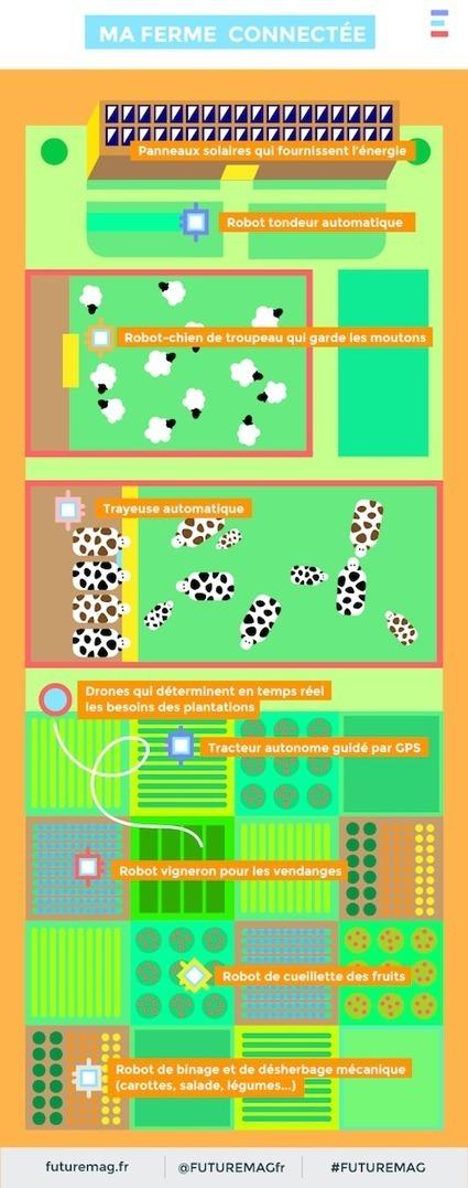 L'infographie de la ferme de demain selon FutureMag - Wikiagri.fr | RDV Agri, Actu des Professionnels de l'Agriculture. | Scoop.it