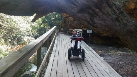 Tweet from @WarriorOnWheels | Accessible Tourism | Scoop.it