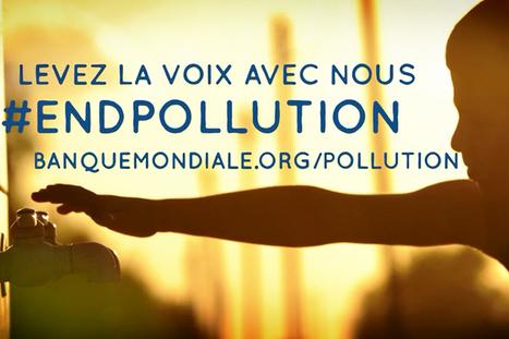 La pollution toxique : décryptage avec Richard Fuller | Ecologie - Humanisme - Solidarités | Scoop.it