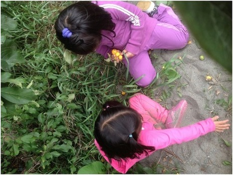 Cultivate the Scientist in Every Child: David Hawkins and the Pond Study | Outdoor Early Learning | Scoop.it