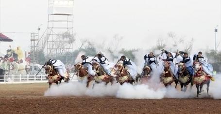Festival du cheval à Tiaret