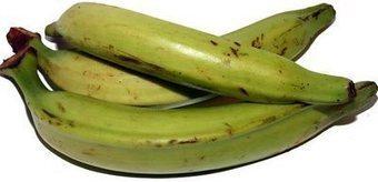 México: Buscan cicatrizante a partir de la cáscara de plátano macho | Platano-Banana (Musa Cavendishii) | Scoop.it