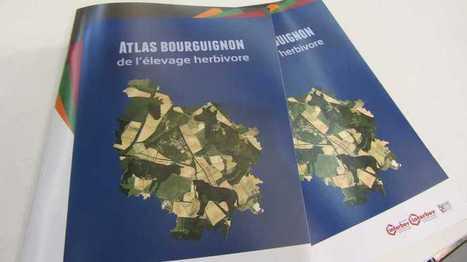 Élevage: un atlas pour lutter contre les préjugés en Bourgogne | Elevage | Scoop.it