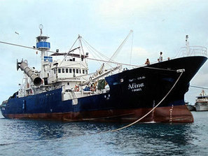 Peru - Fishing for tuna banned in the eastern Pacific | Fisheries & Fishing Technology | Scoop.it