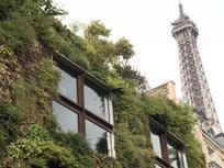 Le végétal à la conquête de la ville | La nature en ville. | Scoop.it