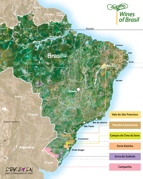 Guide Wines of Brazil | South American Wines Online | Scoop.it