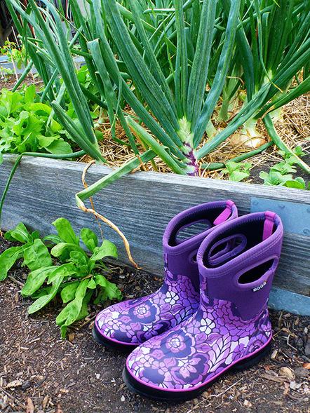 Garden Betty | Annie Haven | Haven Brand | Scoop.it