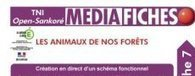 Sankoré - Les MédiaFICHES | Open Sankoré pour tous les TBI et pour tous les niveaux! | Scoop.it
