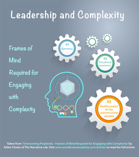 Video: Aiden Choles on the Frames of Mind to Nurture for Engaging with Complexity | Corporate Culture and OD | Scoop.it