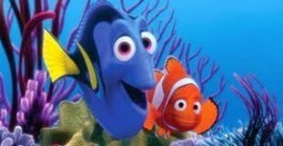 Finding Nemo is a story of two fish Movie Review Online   Digital Marketing Services   Scoop.it