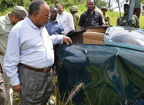 VIDEO. Tanzanie : un pilote britannique abattu par des braconniers d'éléphants | Des infos sur notre planète : ecologie , biodiversité | Scoop.it