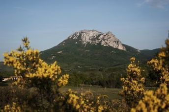In the Corbières, the Pech de Bugarach, the top of the strange | Bugarach | Scoop.it