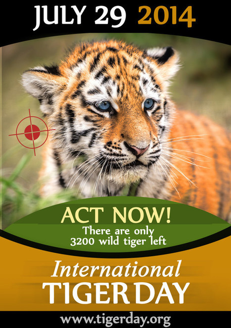 International Tiger Day Poster | GarryRogers Biosphere News | Scoop.it
