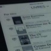 Canada : baisse des ventes d'ebooks, et retour au papier ?   Bibliothèques   Scoop.it