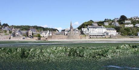 Marée verte sur les plages bretonnes   Toxique, soyons vigilant !   Scoop.it